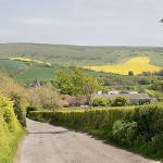 south_downs_lane